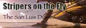 San Luis Diaries