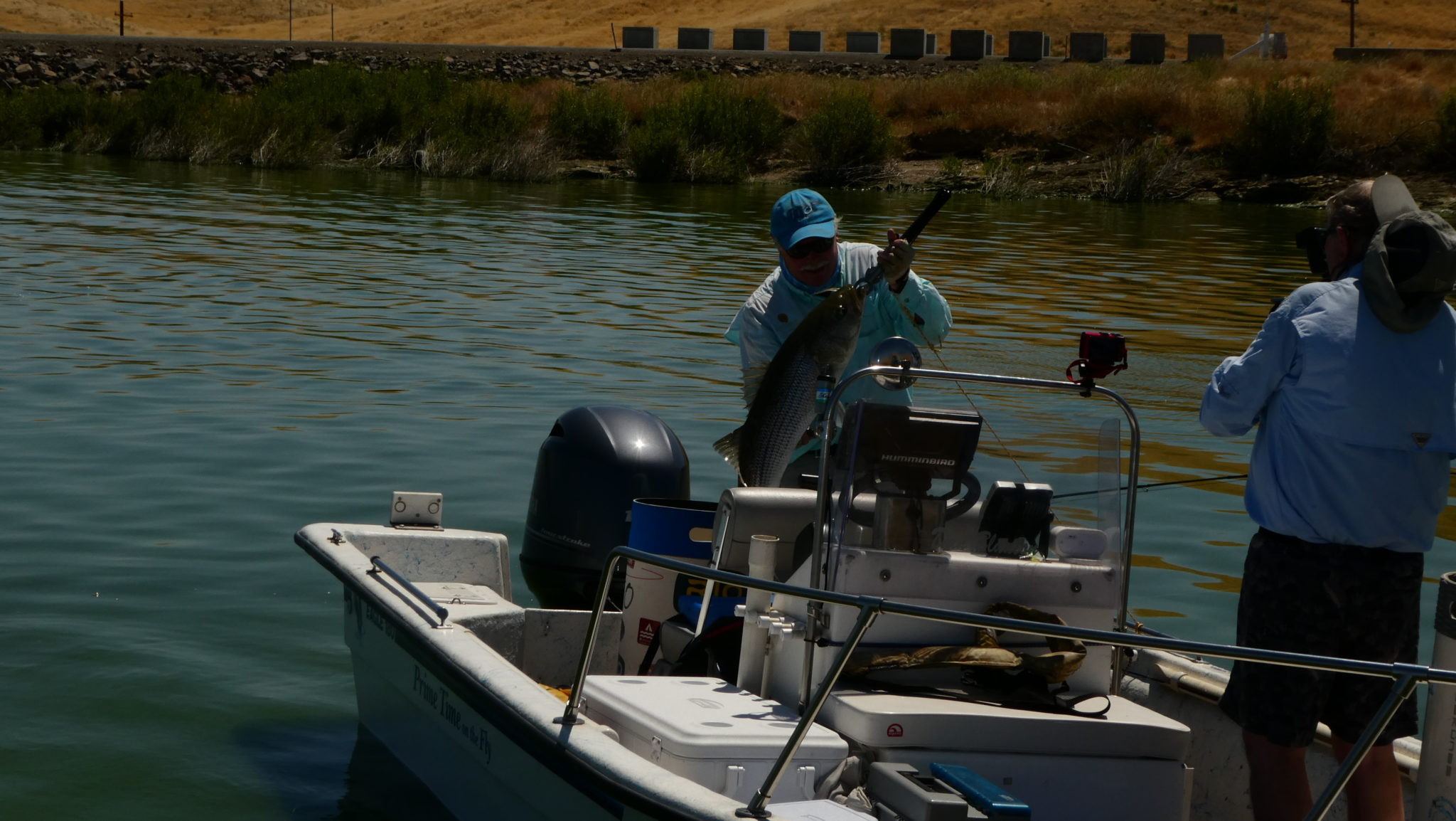 P1000718 for San luis reservoir fishing report 2017